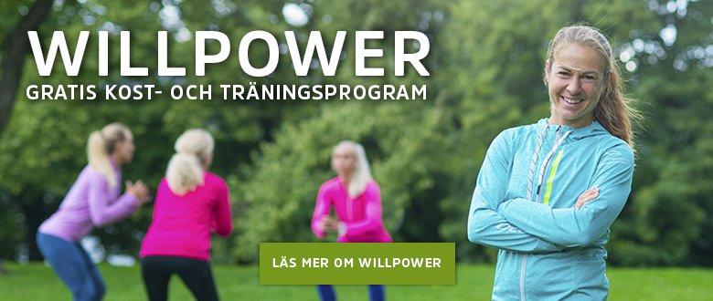 Läs mer om Willpower